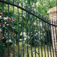 Gate-roses-vines